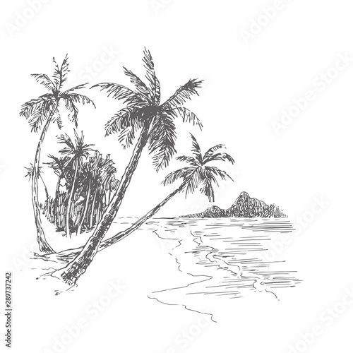 vector-vintage-illustration-of-palm-beach-in-engraving-style-hand-drawn-ink-sketch-of-tropical-landscape-with-trees-and-sea-ocean-coast