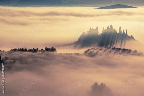 Montage in der Fensternische Lachs Drowned in the fog
