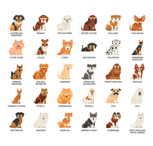 Breed Dogs 1 , Thin Line And Pixel Perfect Icons