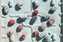 Black Berries And Raspberries ...