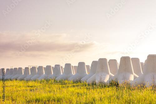 Fotografia, Obraz  柔らかい朝日が包み込む草むらの上にあるテトラポッドのイメージ