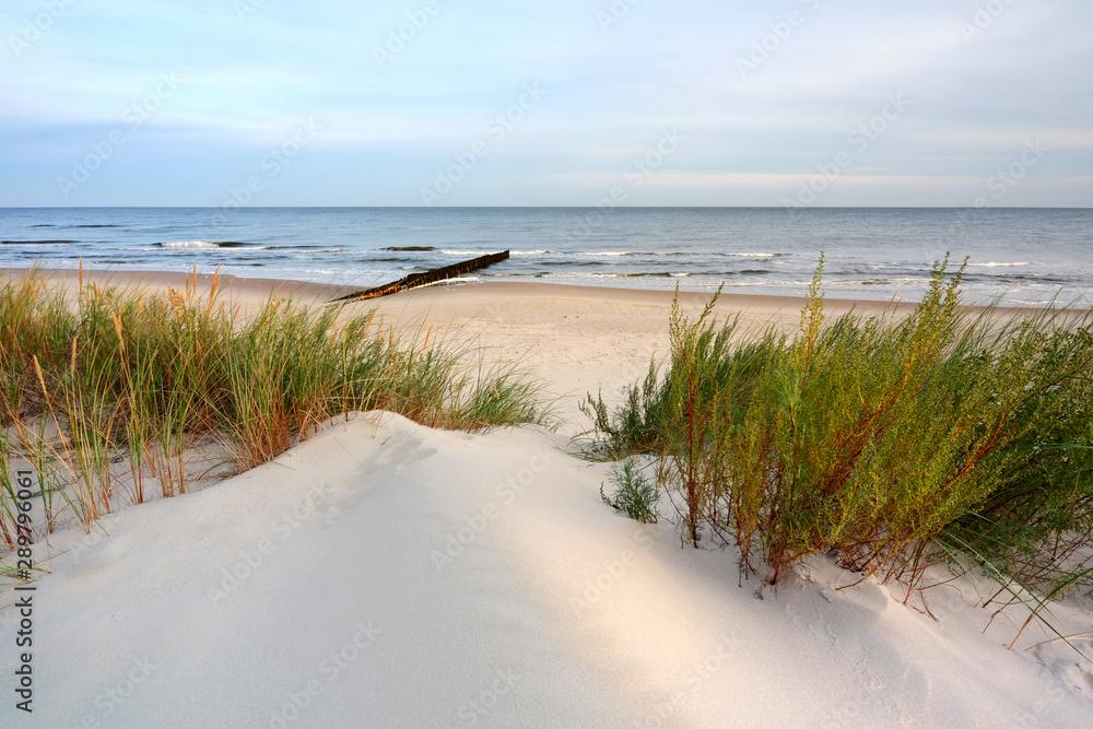 Fototapeta Wydmy na wybrzeżu Morza Bałtyckiego,plaża w Dźwirzynie,Polska.