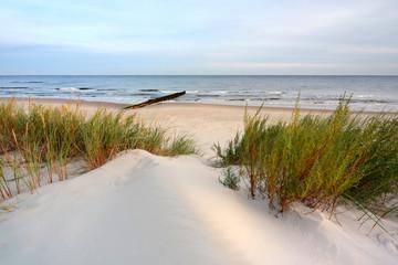 Fototapeta na wymiar Wydmy na wybrzeżu Morza Bałtyckiego,plaża w Dźwirzynie,Polska.