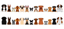 Large Dogs Border Set, Upper Body, Front And Back