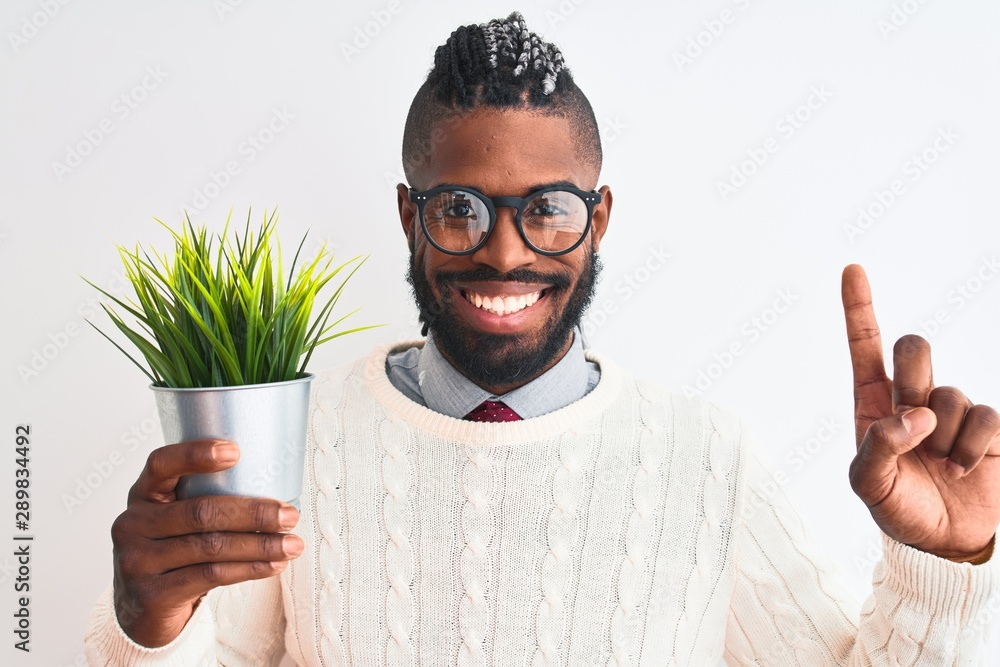 Fototapety, obrazy: African american man with braids holding plant pot over isolated white background surprised with an idea or question pointing finger with happy face, number one