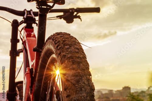 Fototapeta Back shot of mountain bike on sunset . Rear wheel. Mountain bike tire. Tires 27,5 inch MTB Bicycle component. obraz