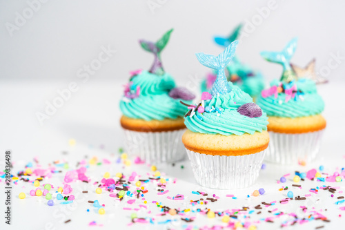 Mermaid cupcakes Canvas Print