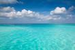 Maldive mare caraibi