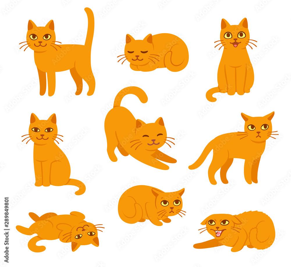 Kot kreskówka pozuje <span>plik: #289849801 | autor: sudowoodo</span>