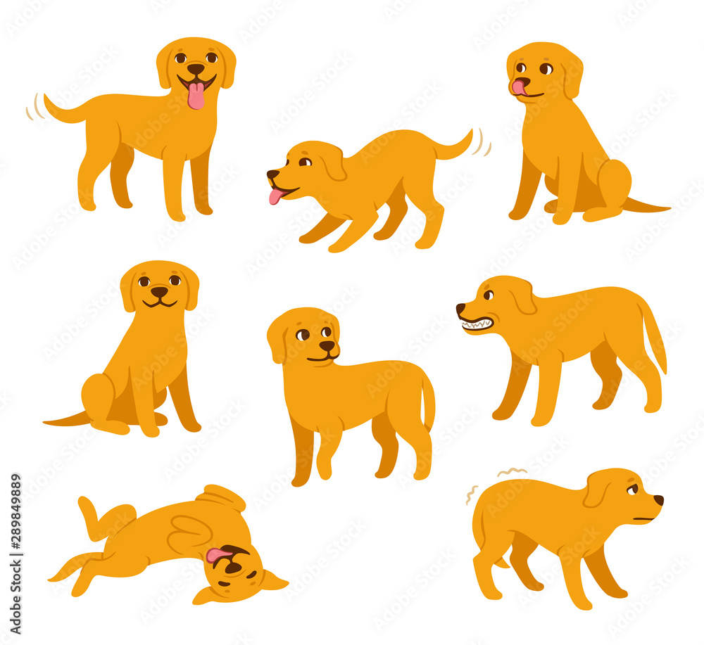Fototapety, obrazy: Cartoon dog poses set