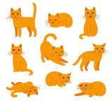 Fototapeta Fototapety na ścianę do pokoju dziecięcego - Cartoon cat poses set