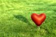 canvas print picture - Ballon in Herzform vor grüner Wiese
