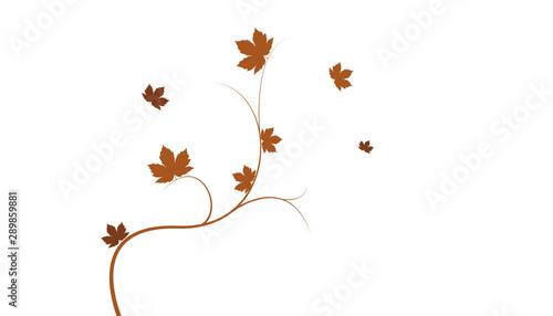 sfondo, ramo, foglie, autunno, Fototapeta