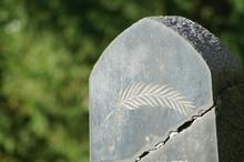 Jüdischer Grabstein Mit Stilisiertem Palmzweig In Mülheim An Der Ruhr