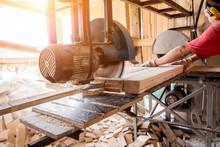 Modern Sawmill. A Carpenter Wo...