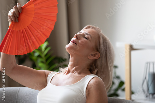 Vászonkép  Exhausted older woman waving fan close up, suffering from heat
