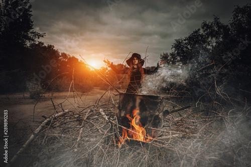 Vászonkép  witch cooking spell