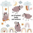 set of isolated lambs and elements on a white background - vector illustration, eps