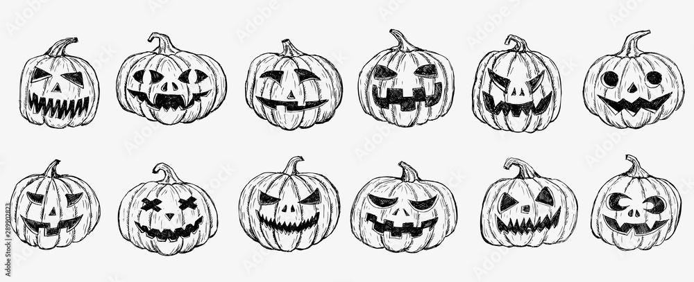 Fototapeta Halloween pumpkin set. Hand drawn illustration.