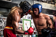 Friendly Boxing Sparring