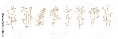 Photo  Set hand drawn grass and flowers on white isolated background