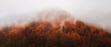 Autumn - Mountain In The Fog