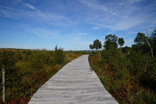 Türaufkleber Darknightsky Landscape of High Fens