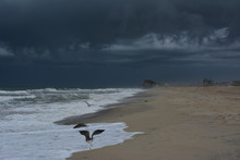 Dark Storm Clouds Over The Beach On The Outer Banks Of North Carolina