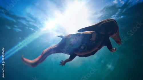 Fotografie, Tablou  Diplocaulus, extinct amphibian from the Late Carboniferous to Permian period