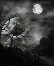 Creepy Human Skull For Horror,...
