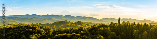 Keuken foto achterwand Honing Panoramic view from vineyard to green hills of south styrian wine route in Austria in sunset. Glanz an der Weinstrasse.