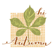 "Autumn Mood. Stylish Typography Slogan Design ""Hi Autumn"" Sign. Chestnut Leaf With Checkered Background And Lettering. Vector."