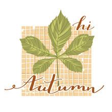 Autumn Mood. Stylish Typograph...
