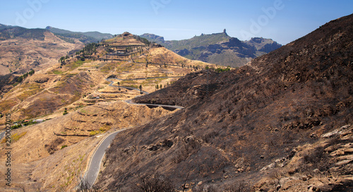 Photo Gran Canaria after wild fire