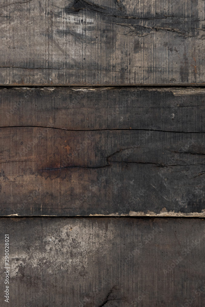 Fototapety, obrazy: Wood texture background surface old natural pattern