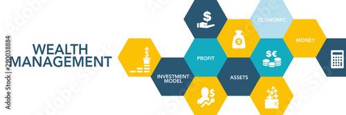 Cuadros en Lienzo Wealth Management Icon Concept