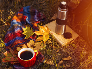 Autumn composition. Cup of coffee with autumn bright warm scarf and dry leaves outside. Autumn lifestyle. Outdoor recreation
