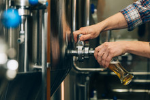 Brewer Filling Beer In Glass F...