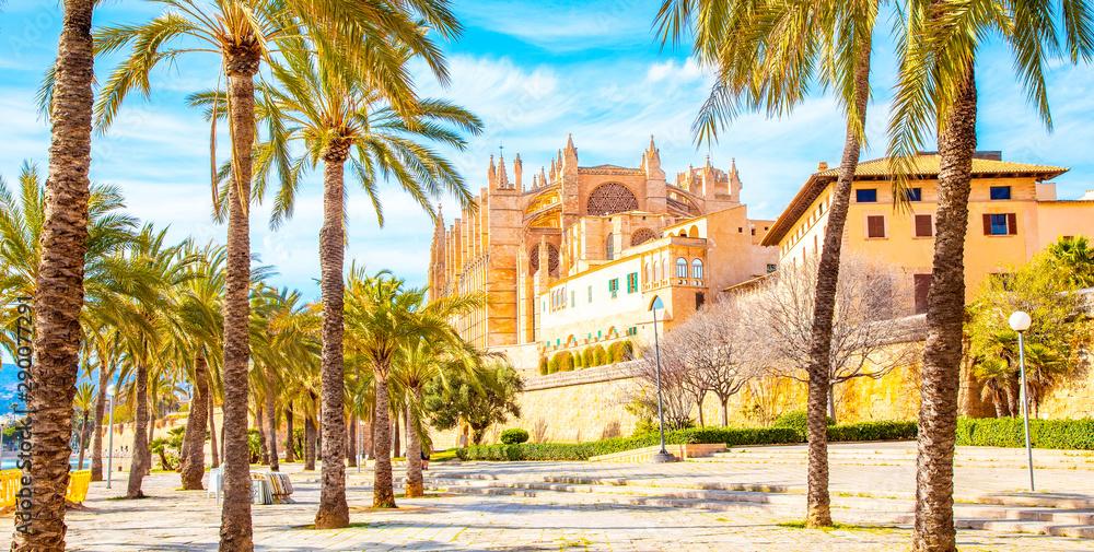 Fototapety, obrazy: Palma de Mallorca Cathedral La Seu, Spain travel photo