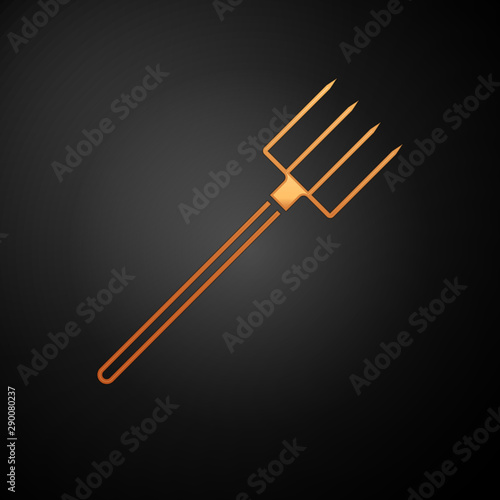 Fotografía  Gold Garden pitchfork icon isolated on black background