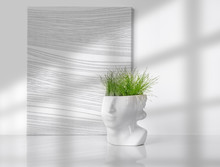 Grass Growing In A Head Plante...