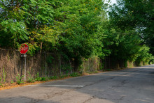 Ravenswood Avenue In Chicago N...