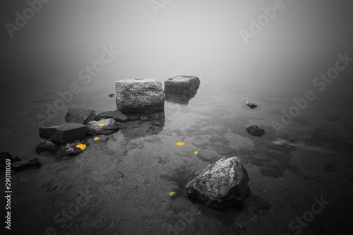 Door stickers Gray River bank with pebbles. Stones in the water and yellow leaves, floating in the water. Dreamy foggy morning.
