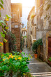 Beautiful alley in Tuscany, Old town, Italy