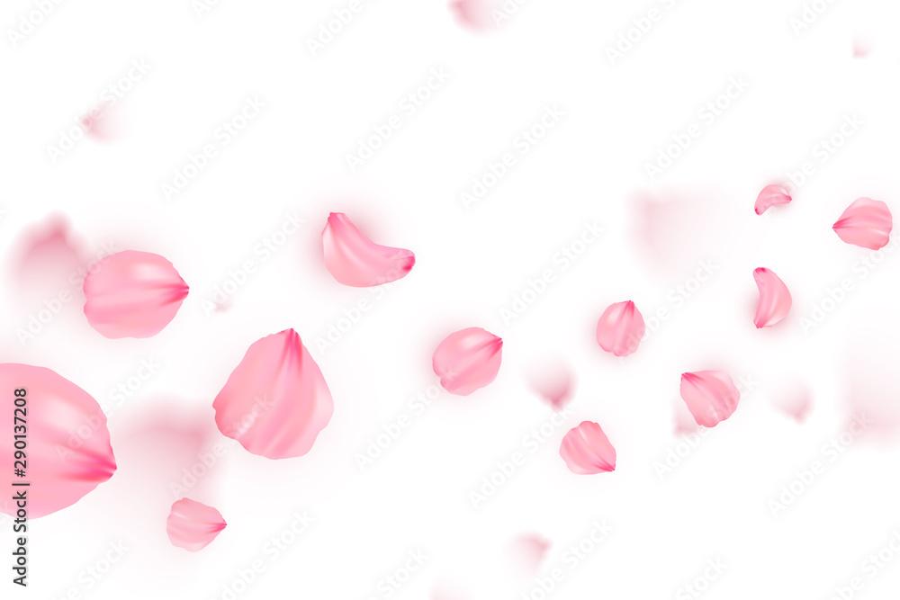 Fototapeta Banner with sakura on white background