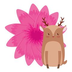Cute animals design vector illustration