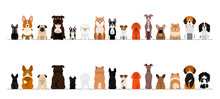 Small Dogs Border Border Set, Full Length, Front And Back