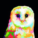 colorful barn owl vector illustration black background. owl wpap illustration