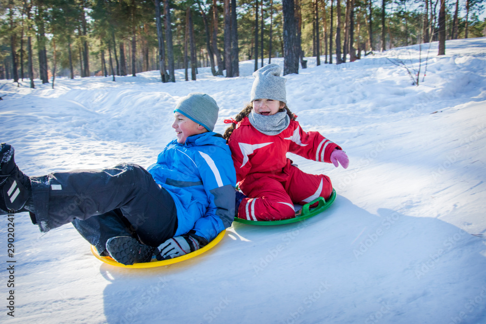 Fototapety, obrazy: In winter, in the forest on a bright sunny day, brother and sister ride plastic plates from the mountain.