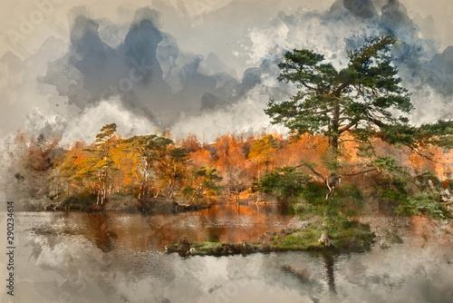 Fotomural  Digital watercolor painting of Beautiful landscape image of Tarn Hows in Lake Di